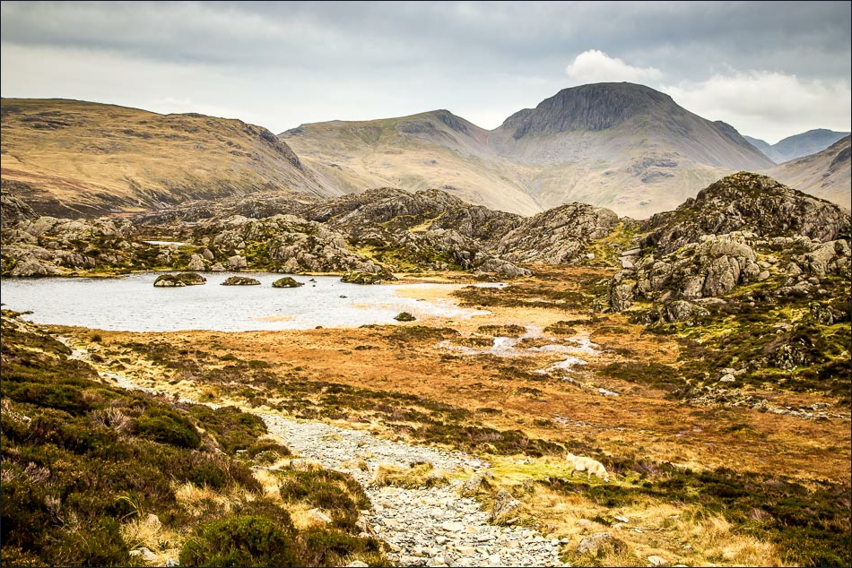 View of Wainwright's last resting place, Innominate Tarn on Haystacks