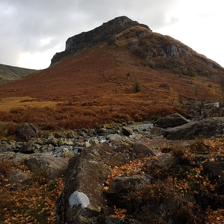 Solitary fell standing viewed from a Borrowdale walk, with a craggy summit, covered in bracken with autumnal hues.
